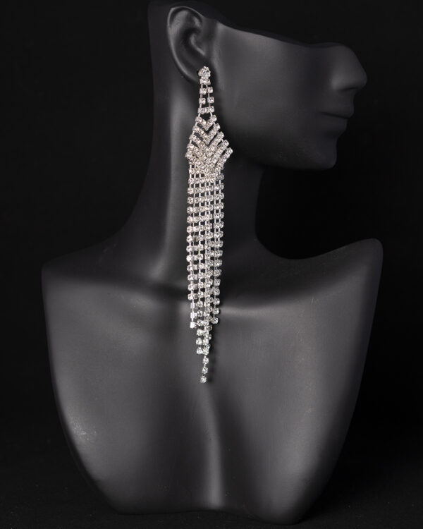 Wellness Competition earrings